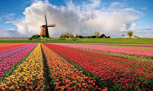 Geert Wilders è un test per l'Europa, per i conservatori europei e per l'Olanda