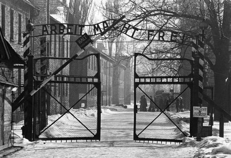 Auschwitz, I will survive