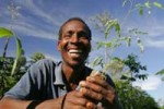 africa_agricoltura