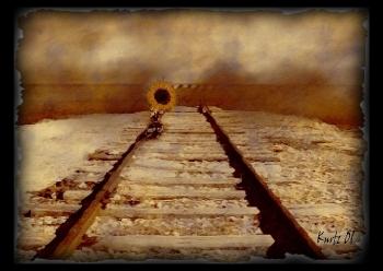 Arenaways e NTV, il percorso a ostacoli dei privati nel mercato ferroviario