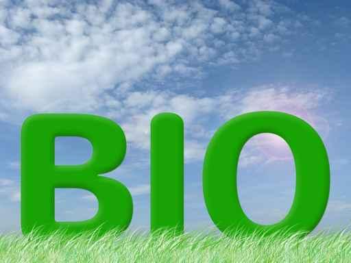 Quello che nessuno vi dice del cibo biologico