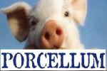 Il_porcellum1